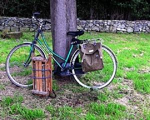 Kelly's Bike