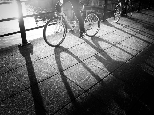 Bikes,_and_shadow_amsterdam_(Unsplash)